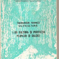 (C5646) INDRUMARI TEHNICE - SILVICULTURA, CULTURA SI PROTECTIA PLOPILOR SI SALCIEI, 1982, Alta editura