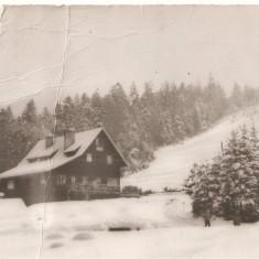 CPI (B4512) PREDEAL. CABANA CLABUCET-SOSIRE SI PARTIA DE SCHI, CIRCULATA, 1964. - Carte Postala Muntenia dupa 1918, Fotografie