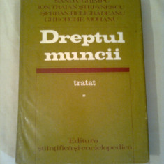 DREPTUL MUNCII - TRATAT ( vol. 1 ) ~ SANDA GHIMPU / ION TRAIAN STEFANESCU / SERBAN BELIGRADEANU - Carte Dreptul muncii