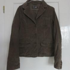 Jacheta de primavara de catifea raiata, marca River Woods, femei mas 40 - Jacheta dama, Culoare: Maro, Bumbac