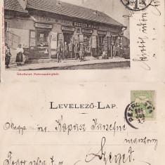 Petrosani ( Hunedoara ) - Magazin, clasica - RRR - Carte Postala Crisana pana la 1904, Circulata, Printata
