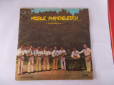 VASILE PANDELESCU - ACORDEON , VINIL FARA ZGARIETURI .
