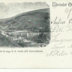 D 156 ILUSTRATA ORAVITA