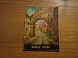 SIBIU VECHI -- Hans Hermann -- contine 12 desene ( vederi ), Alta editura