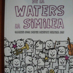 DE LA WATERS LA SIMILEA ( OAMENI COOL DESPRE MUZICA LOR ) de RADU PARASCHIVESCU - Muzica Dance
