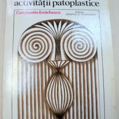 PSIHOLOGIA ACTIVITATII PATOPLASTICE-CONSTANTIN ENACHESCU 1977 - Carte Psihologie