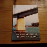 PODURILE VIITORULUI PE DUNAREA DE JOS  -- Gheorghe Buzuloiu  --  2006, 208 p. cu imagini color, schite si harti in text