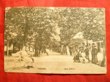 "Ilustrata Valcele Aleea Bailor - judet Covasna ,anii '20 ,stamp. liniara ""Necunoscut""-bilingv"