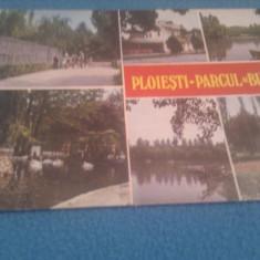 CP PLOIESTI PARCUL BUCOV NECIRCULATA - Carte Postala Muntenia dupa 1918