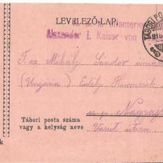 CPI (B4746bis) LEVELEZO-LAP, TABORBOL - TABORBA, CARTE POSTALA MILITARA, KUK, WW1, UNGARIA, AUSTRIA, 25.MAI.1916, AUSTRO-UNGARIA, RAZBOI, ARMA - Carte Postala Transilvania 1904-1918, Circulata, Printata