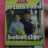 Film - Filmele Adevarul - colectia Mari comedii romanesti - Primavara bobocilor !!!