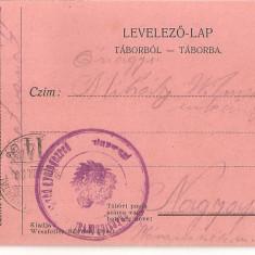 CPI (B4746) LEVELEZO-LAP, TABORBOL - TABORBA, CARTE POSTALA MILITARA, KUK, WW1, UNGARIA, AUSTRIA, 28.IUN.1916, AUSTRO-UNGARIA, MILITAR, RAZBOI, ARMAT - Carte Postala Transilvania 1904-1918, Circulata, Printata