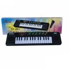 Orga cu microfon Miles - Instrumente muzicale copii