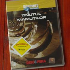 Film documentar Discovery - Tinutul mamutilor !!!, DVD, Altele