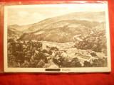 Ilustrata Oravita - Vedere Generala anii '20 ,Ed. Libr. Felix Weiss Oravita