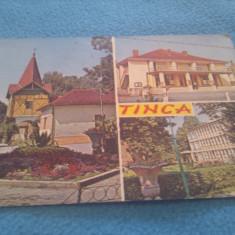 CP TINCA JUDETUL BIHOR CIRCULATA - Carte Postala Transilvania dupa 1918