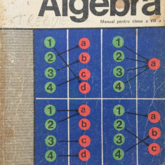 ALGEBRA MANUAL PENTRU CLASA A VIII-A - Ivanca Olivotto, C. Ionescu-Bujor - Manual scolar didactica si pedagogica, Clasa 8, Didactica si Pedagogica, Matematica