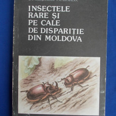 Z.Z.NECULISEANU - INSECTELE RARE SI PE CALE DE DISPARITIE DIN MOLDOVA - 1992 - Carte Zoologie