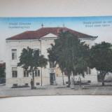 SFANTU GHEORGHE - SCOALA PRIMARA DE STAT - CIRCULATA, Fotografie