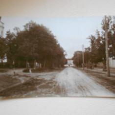 SFANTU GHEORGHE - ALEA REGINA MARIA - NECIRCULATA