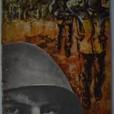 APARTAMENTUL DE LA ETAJUL 18 - GEORGE FLORIN COZMA, IOAN CHILOM - Roman