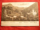 Ilustrata Manastirea Turnu - Calimanesti , Ed. E.Fischer, Necirculata, Printata