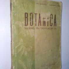 Manual botanica pentru clasa a V-a, 1958 - Manual scolar, Clasa 5, Biologie