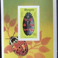 MONGOLIA 1991 - INSECTA, 1 S/S, NEDANTELATA, NEOBLITERATA - MG 136