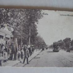BRAILA- STRADA CALARASI, CARTE POSTALA // TRAMVAI, CARUTA... - Carte Postala Maramures 1904-1918, Circulata, Fotografie