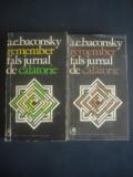 A. E. BACONSKY - REMEMBER FALS JURNAL DE CALATORIE 2 volume