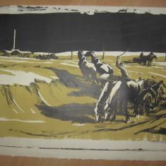 LITOGRAFIE MARCEL CHIRNOAGA - Pictor roman, Abstract, Cerneala