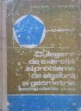 CULEGERE DE EXERCITII SI PROBLEME ALGEBRA SI GEOMETRIE CLASELE VI-VIII Arimescu