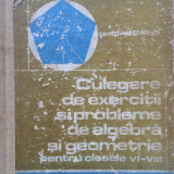 CULEGERE DE EXERCITII SI PROBLEME ALGEBRA SI GEOMETRIE CLASELE VI-VIII Arimescu - Culegere Matematica
