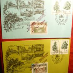 2 Plicuri 100 Ani Hohe Rinne -Paltinis, 2 timbre Hohe Rinne, 1995