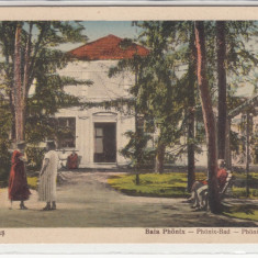 BUZIAS, BAIA PHONIX - Carte Postala Banat 1904-1918, Necirculata, Printata