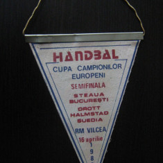 Fanion Steaua Bucuresti-Droot Halmstad (Suedia), handbal masculin, 16 aprilie 89