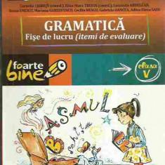 Cornelia Chirita - GRAMATICA FISE DE LUCRU (ITEMI DE EVALUARE) CLASA V - Manual scolar paralela 45, Clasa 5, Paralela 45, Romana