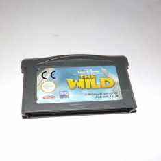 Joc consola Nintendo Gameboy Advance - The Wild - Jocuri Game Boy Altele, Actiune, Toate varstele, Single player