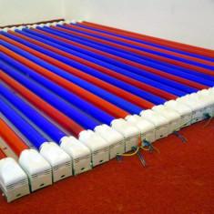 24 Tuburi fluorescente (Neon) 36W, LOHUIS Rosu/Albastru incl. suporturi (balast) - Tub neon