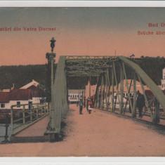 SALUTARI DIN VATRA DORNEI, PODUL PESTE DORNA - Carte Postala Bucovina 1904-1918, Necirculata, Printata