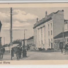 TARGUL MURES, POSTA, MAGAZINE, BIROU AVOCAT KINCS & KLEIN - Carte Postala Transilvania 1904-1918, Targu Mures, Necirculata, Printata