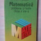 VICTOR RAISCHI - MATEMATICA - PROBLEME SI TESTE CLASA A VIII-A - Culegere Matematica