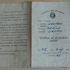 Certificat de producator agricol 1959 - Hartie cu Antet