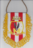 Fanion fotbal FC MILSAMI ORHEI (Republica Moldova)