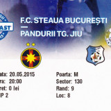 Bilet meci fotbal STEAUA - PANDURII TARGU JIU 20.05.2015 (finala-Cupa Ligii)