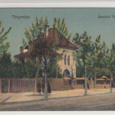TARGOVISTE, SERVICIUL TEHNIC - Carte Postala Muntenia 1904-1918, Necirculata, Printata