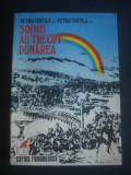 PETRU VINTILA - SOIMII AU TRECUT DUNAREA