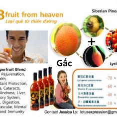 G3 - Gâc - Fructul din rai ! Antioxidant ce creste imunitatea organismului - Produs sporirea imunitatii