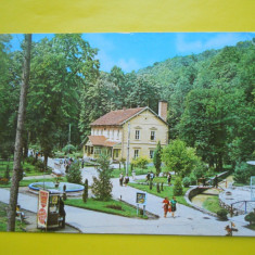 HOPCT 11914 BAILE MONEASA -VEDERE DIN STATIUNE - JUDETUL ARAD [ CIRCULATA ] - Carte Postala Crisana dupa 1918, Printata