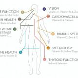 LifePak + Supliment alimentar cu vitamine, minerale si fitonutrienti